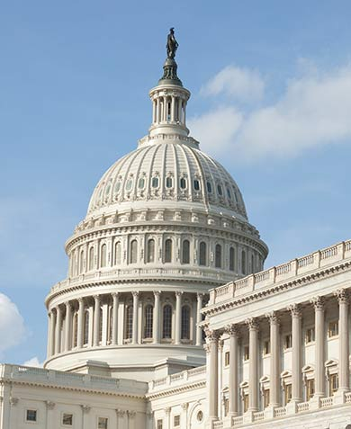 Government Contractors Services - The Capital Group